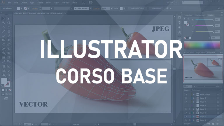 Graphic Design & Illustration (Illustrator Base)